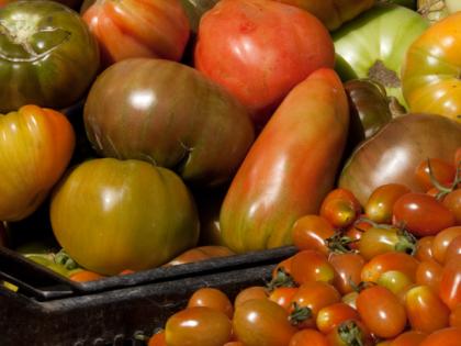 slider-tomates2
